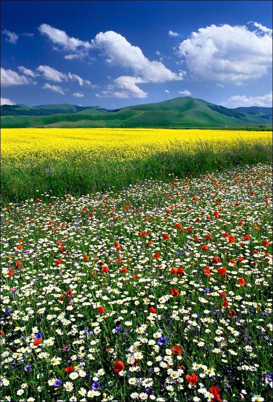 Krásná fotka přírody