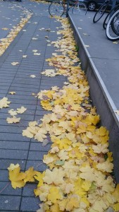 NEW WORLD ADVERTISING, spol. s.r.o. IČO: 27363856